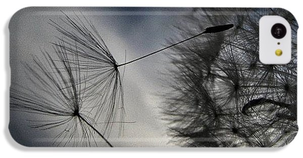 Sky iPhone 5c Case - #mgmarts #dandelion #makeawish #wish by Marianna Mills