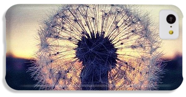 Sky iPhone 5c Case - #mgmarts #dandelion #sunset #simple by Marianna Mills