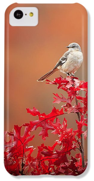 Mockingbird Autumn IPhone 5c Case by Bill Wakeley