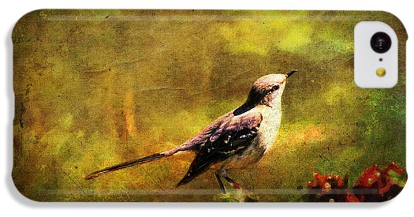 Mockingbird iPhone 5c Case - Mockingbird Have You Heard... by Lianne Schneider