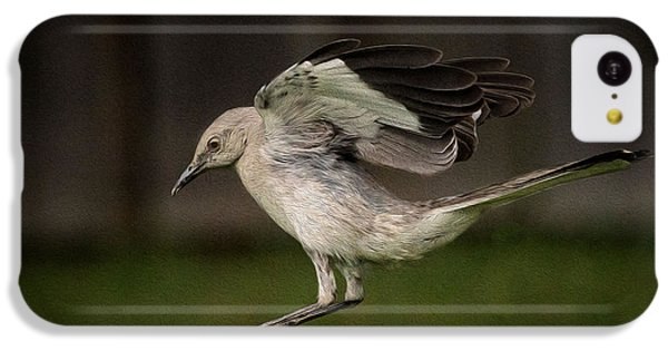 Mockingbird No. 2 IPhone 5c Case by Rick Barnard