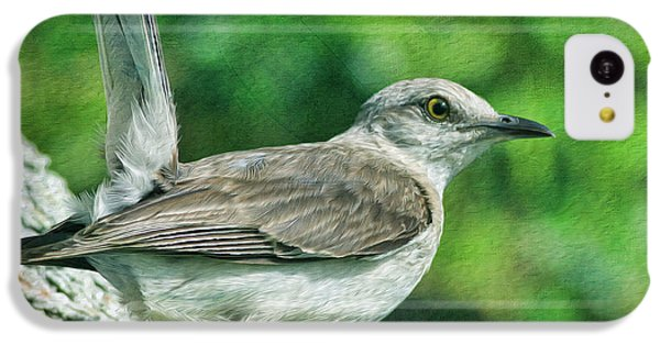 Mockingbird iPhone 5c Case - Mockingbird Pose by Deborah Benoit
