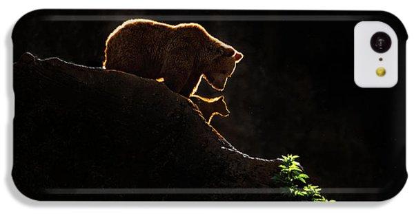 Mom Bear With Cub IPhone 5c Case