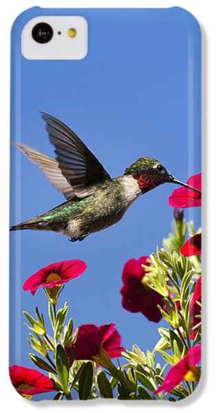 Humming Bird iPhone 5c Case - Moments Of Joy by Christina Rollo