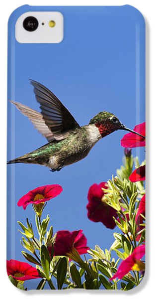 Moments Of Joy IPhone 5c Case by Christina Rollo