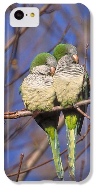 Monk Parakeets IPhone 5c Case by Paul J. Fusco