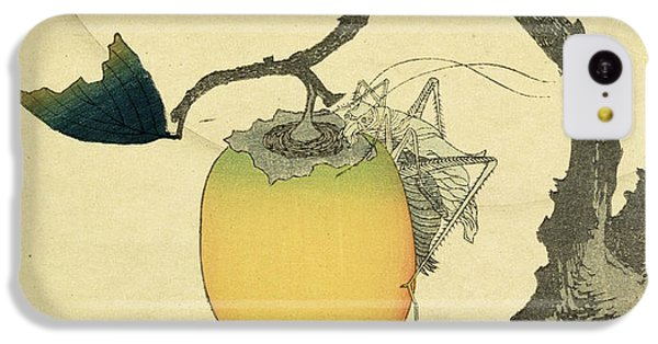 Grasshopper iPhone 5c Case - Moon Persimmon And Grasshopper by Katsushika Hokusai