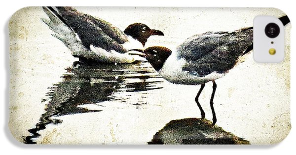 Morning Gulls - Seagull Art By Sharon Cummings IPhone 5c Case