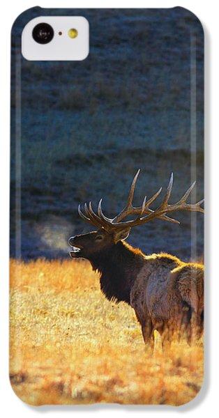 Beautiful Sunrise iPhone 5c Case - Morning Breath by Kadek Susanto