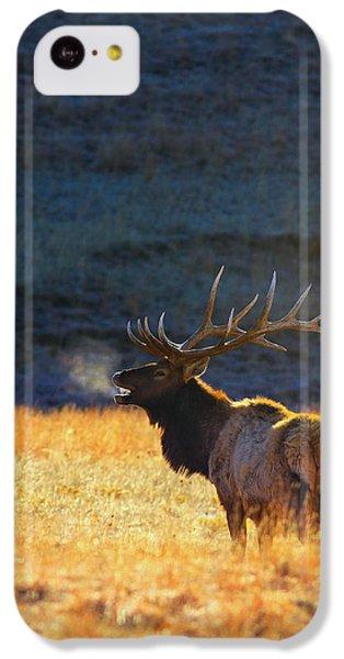 Animals iPhone 5c Case - Morning Breath by Kadek Susanto