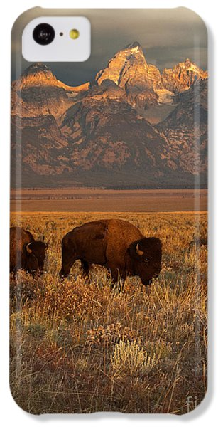 Morning Travels In Grand Teton IPhone 5c Case