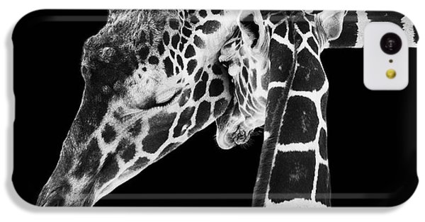 White iPhone 5c Case - Mother And Baby Giraffe by Adam Romanowicz