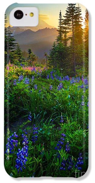 Mountain iPhone 5c Case - Mount Rainier Sunburst by Inge Johnsson