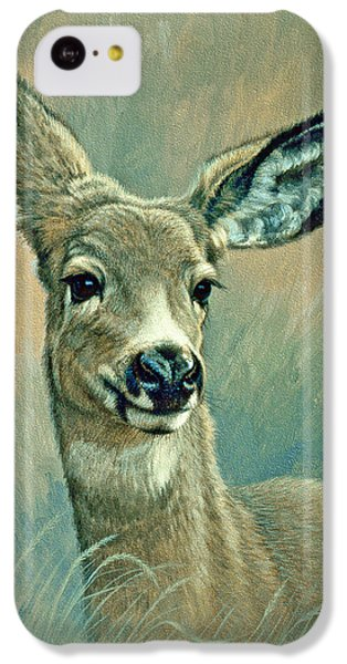 Deer iPhone 5c Case - Muley Fawn At Six Months by Paul Krapf