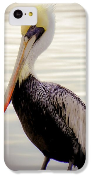 Pelican iPhone 5c Case - My Visitor by Karen Wiles