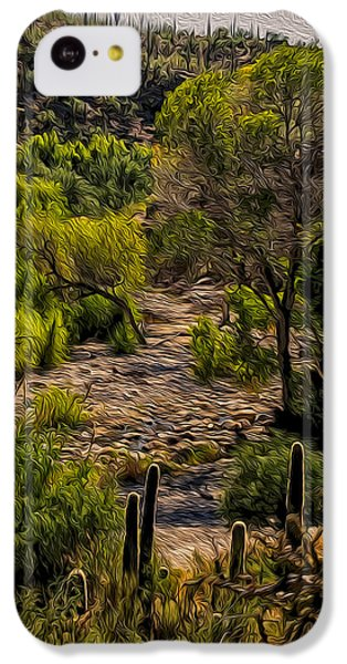 Mystic Wandering IPhone 5c Case by Mark Myhaver