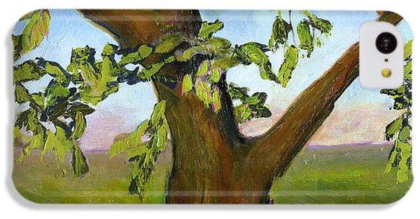 Nesting Tree IPhone 5c Case by Blenda Studio