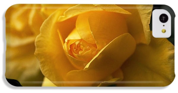New Yellow Rose IPhone 5c Case by Rona Black