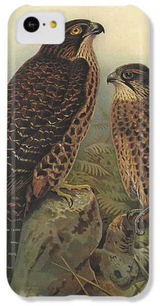 New Zealand Falcon IPhone 5c Case by Dreyer Wildlife Print Collections