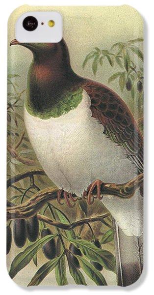 New Zealand Pigeon IPhone 5c Case by Anton Oreshkin