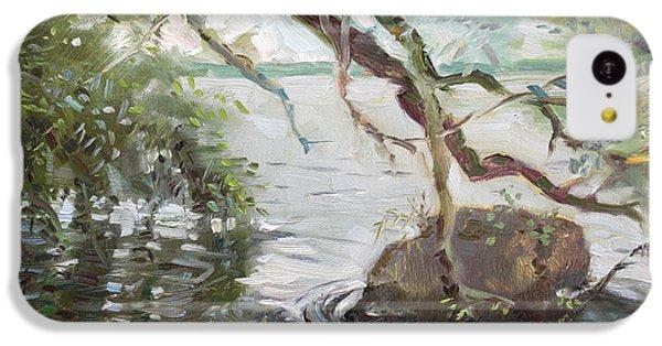 Seagull iPhone 5c Case - Niagara River Side by Ylli Haruni