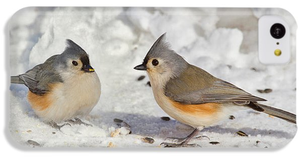 Nice Pair Of Titmice IPhone 5c Case by John Absher