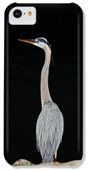 Night Of The Blue Heron 3 IPhone 5c Case