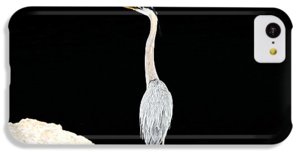 IPhone 5c Case featuring the photograph Night Of The Blue Heron  by Anthony Baatz