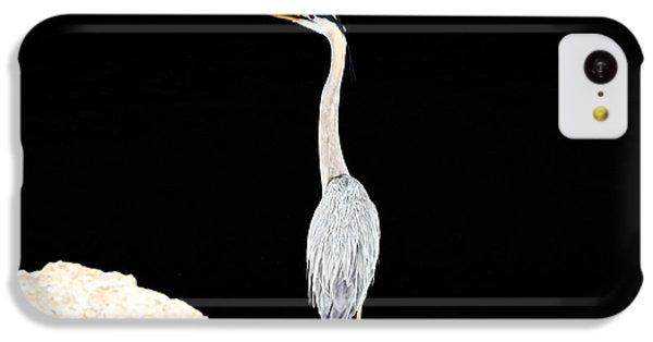 Night Of The Blue Heron  IPhone 5c Case