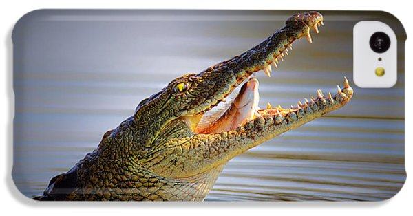 Smallmouth Bass iPhone 5c Case - Nile Crocodile Swollowing Fish by Johan Swanepoel
