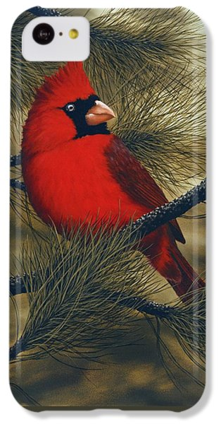 Northern Cardinal IPhone 5c Case by Rick Bainbridge