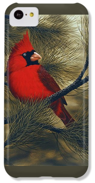 Northern Cardinal IPhone 5c Case by Rick Bainbridge