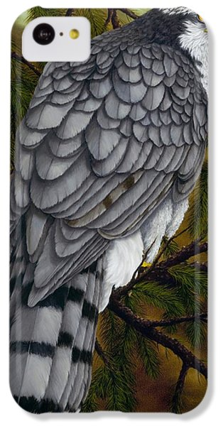 Northern Goshawk IPhone 5c Case by Rick Bainbridge