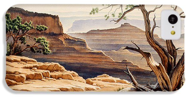 Grand Canyon iPhone 5c Case - Old Tree At The Canyon by Paul Krapf