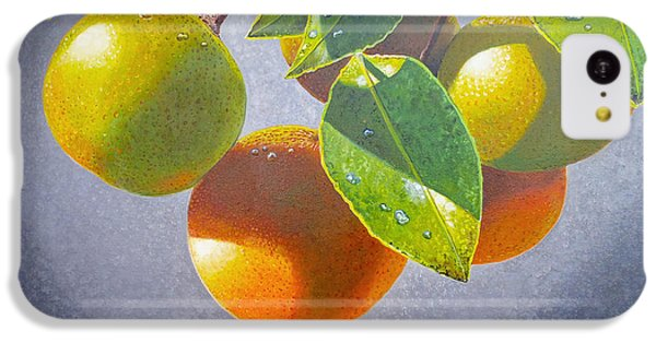Oranges IPhone 5c Case by Carey Chen