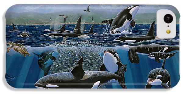 Orca Play Re009 IPhone 5c Case by Carey Chen