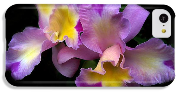 Orchid Embrace IPhone 5c Case by Jessica Jenney