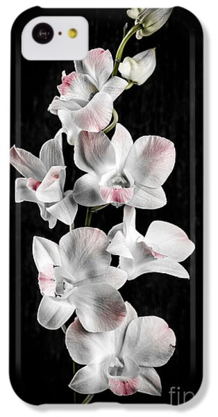 Orchid Flowers On Black IPhone 5c Case by Elena Elisseeva