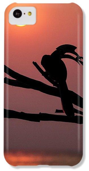 Oriental Pied Hornbills IPhone 5c Case