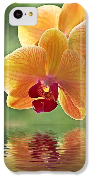 Orchid iPhone 5c Case - Oriental Spa - Square by Gill Billington