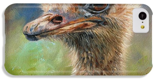 Ostrich IPhone 5c Case by David Stribbling