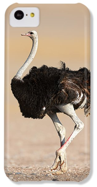 Ostrich IPhone 5c Case by Johan Swanepoel