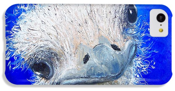 Ostrich Painting 'waldo' By Jan Matson IPhone 5c Case by Jan Matson