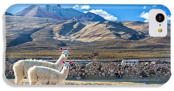 Llama iPhone 5c Case - Pair Of Llamas by Jess Kraft