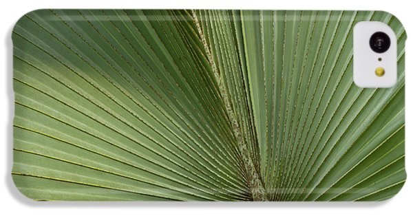 Belize iPhone 5c Case - Palm, Belize Botanic Garden by William Sutton