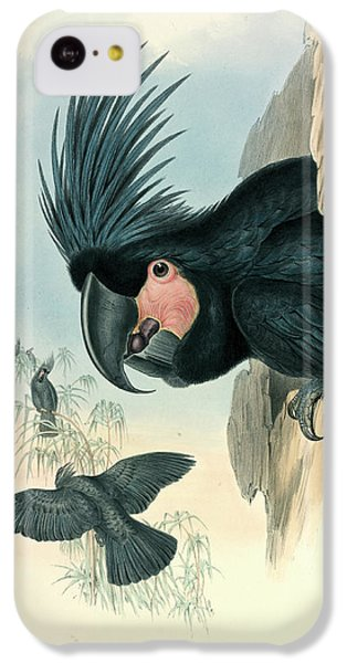 Cockatoo iPhone 5c Case - Palm Cockatoo by Natural History Museum, London