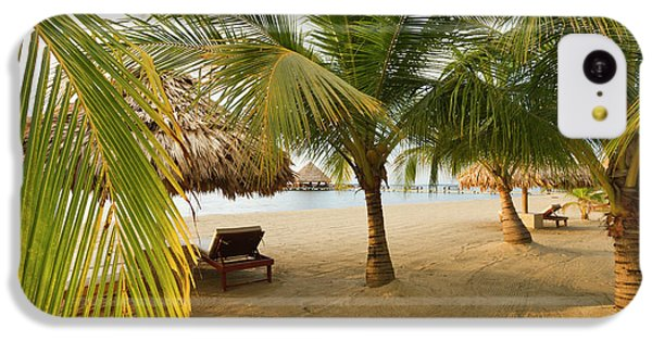 Belize iPhone 5c Case - Palm Trees On Sandy Beach, Placencia by William Sutton