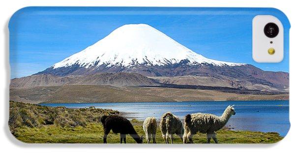 Parinacota Volcano Lake Chungara Chile IPhone 5c Case by Kurt Van Wagner