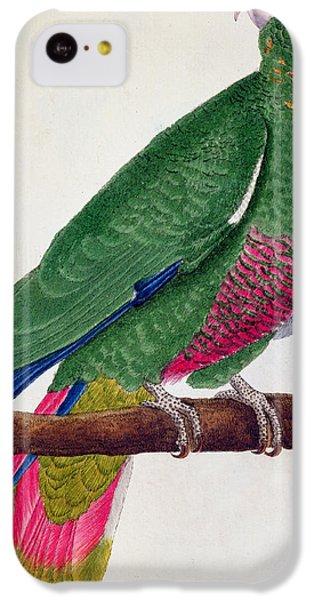 Parrot IPhone 5c Case by Francois Nicolas Martinet