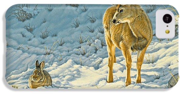 Deer iPhone 5c Case - Passing Curiosity by Paul Krapf